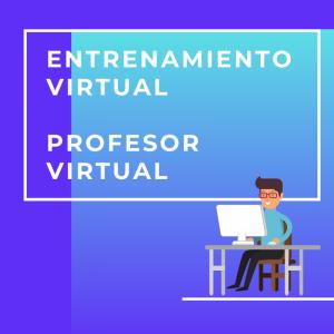 Entrenamiento profesor virtual